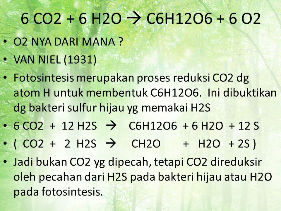 6 CO2 + 6 H2O  C6H12O6 + 6 O2 O2 NYA DARI MANA VAN NIEL (1931)