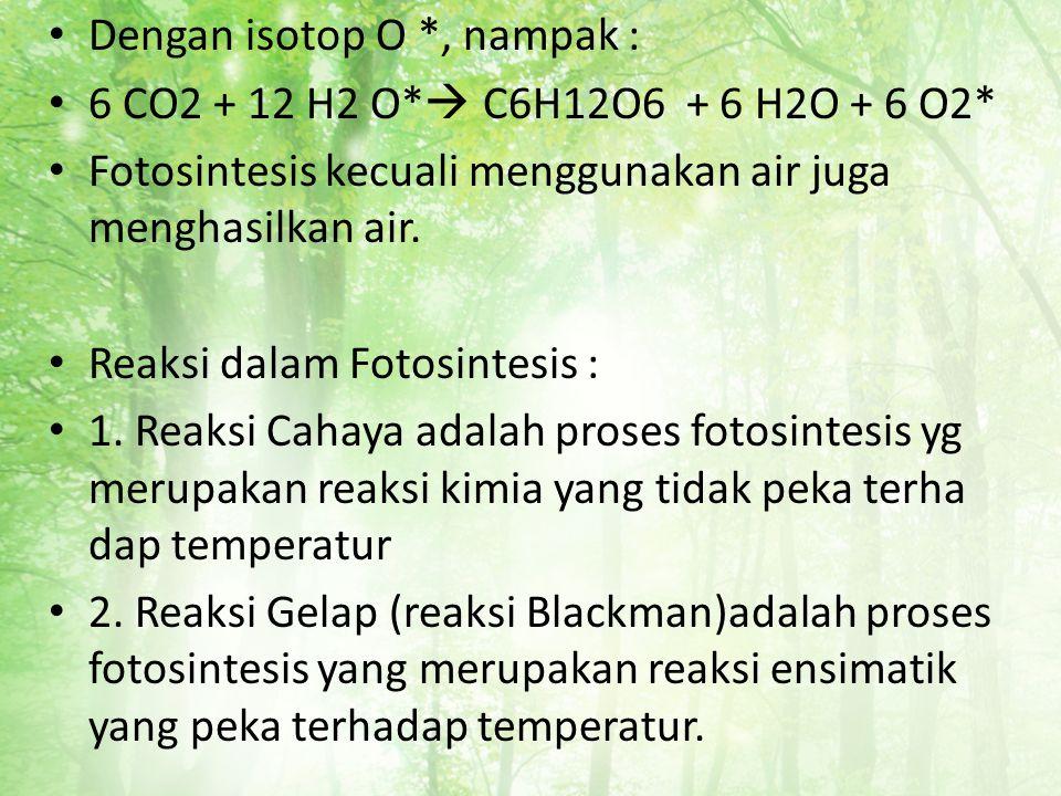 Dengan isotop O *, nampak :