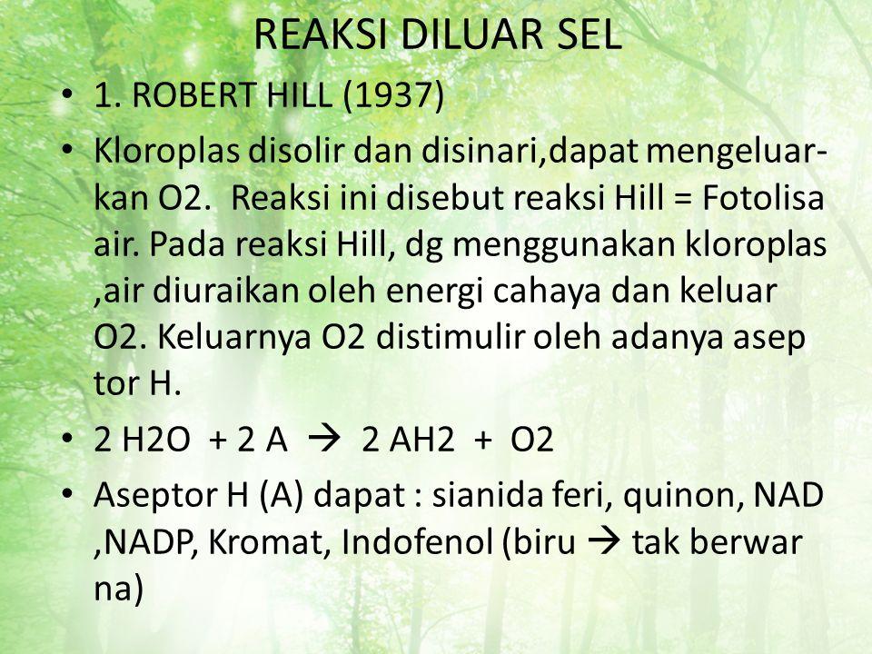 REAKSI DILUAR SEL 1. ROBERT HILL (1937)
