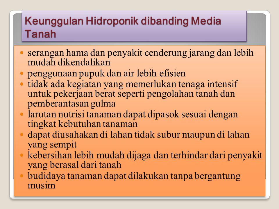 Keunggulan Hidroponik dibanding Media Tanah