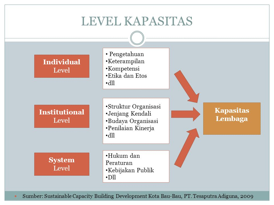 LEVEL KAPASITAS Individual Level Kapasitas Lembaga Institutional Level