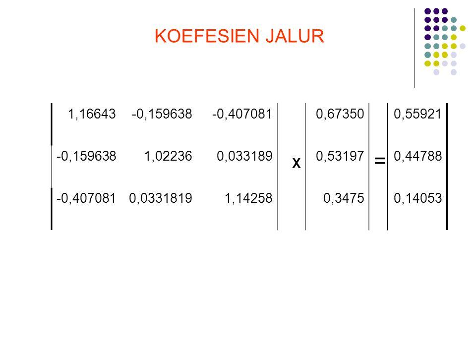KOEFESIEN JALUR 1,16643. -0,159638. -0,407081. 0,67350. 0,55921. 1,02236. 0,033189. X. 0,53197.