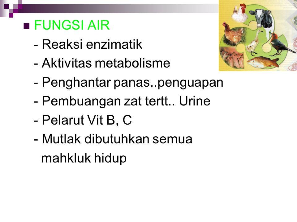 FUNGSI AIR - Reaksi enzimatik. - Aktivitas metabolisme. - Penghantar panas..penguapan. - Pembuangan zat tertt.. Urine.