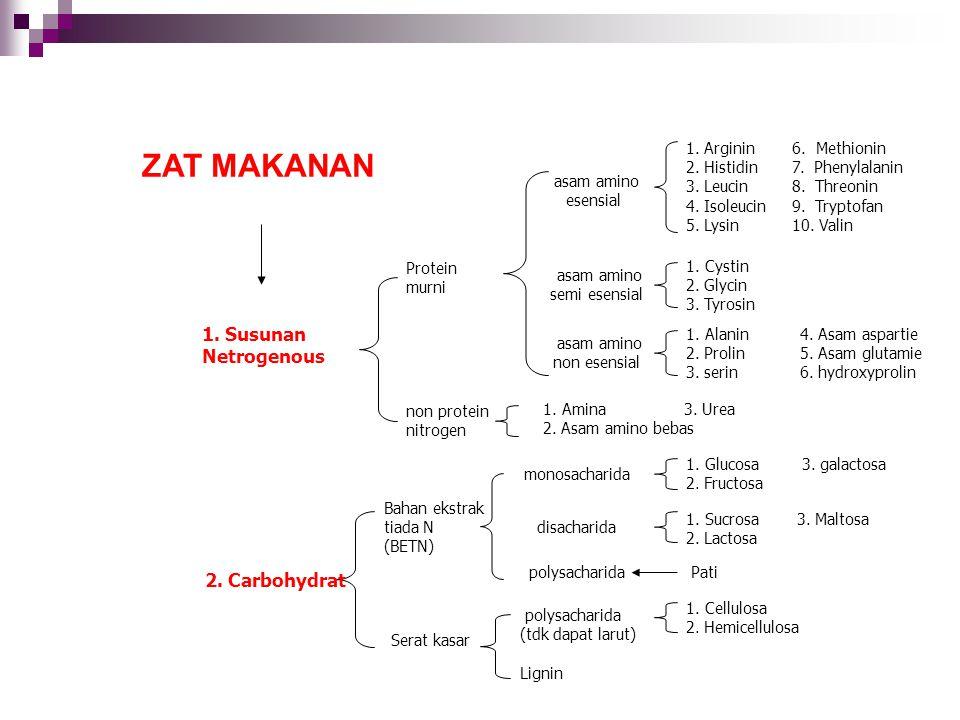 ZAT MAKANAN 1. Susunan Netrogenous 2. Carbohydrat