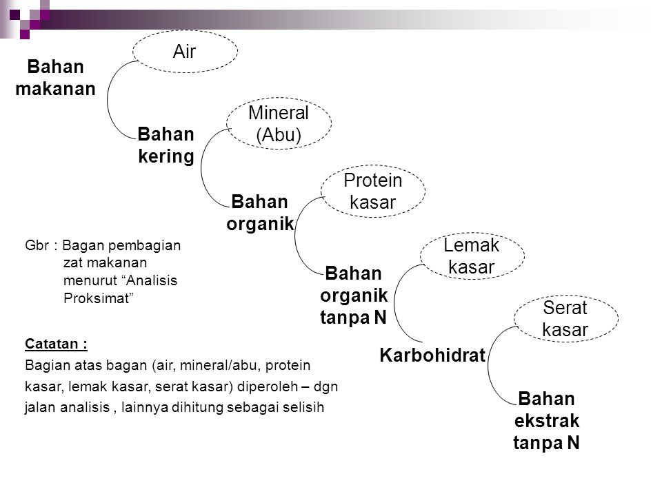 Air Bahan makanan Mineral (Abu) Bahan kering Protein kasar