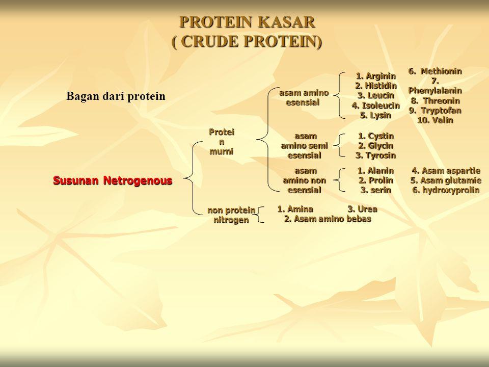 PROTEIN KASAR ( CRUDE PROTEIN)