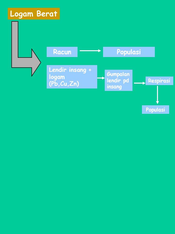 Logam Berat Racun Populasi Lendir insang + logam (Pb,Cu,Zn)