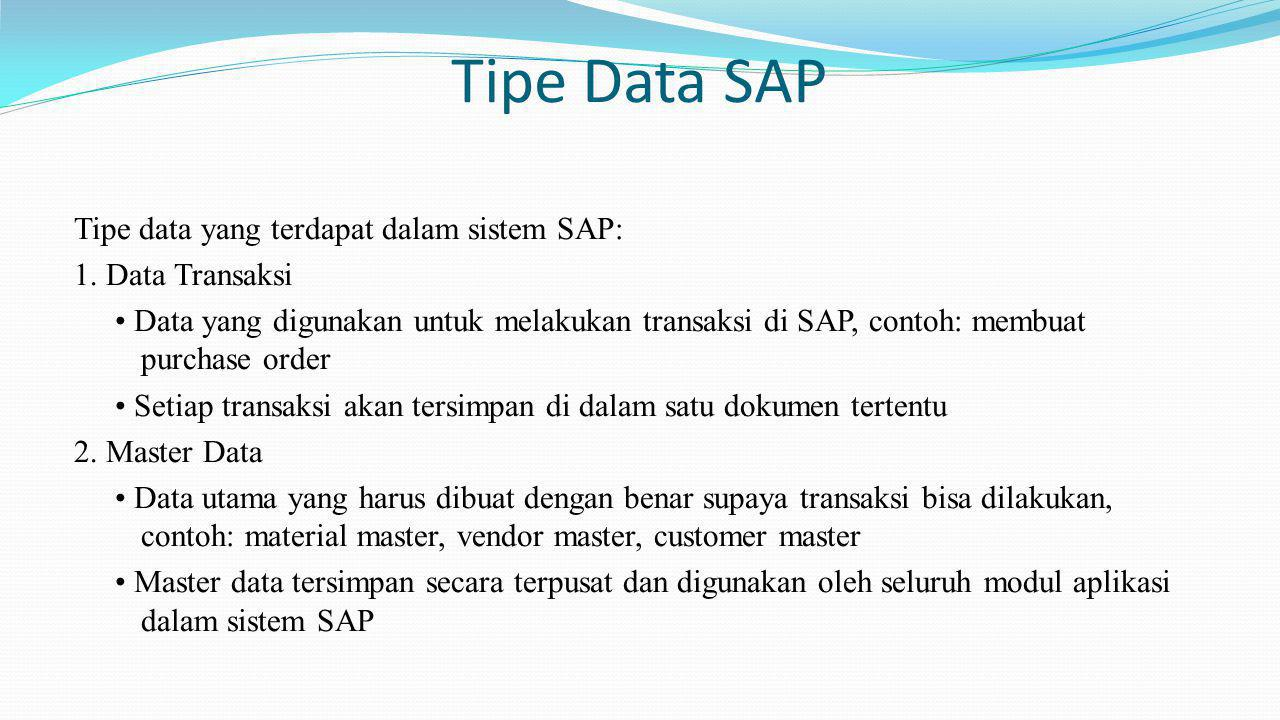 Tipe Data SAP