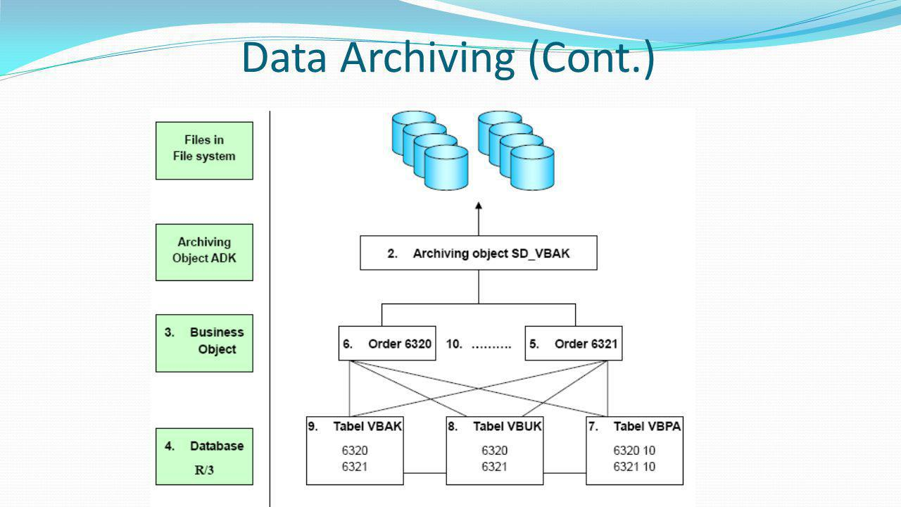 Data Archiving (Cont.)