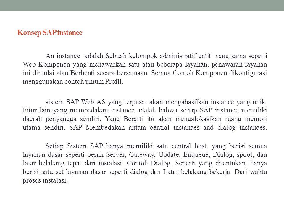 Konsep SAP instance