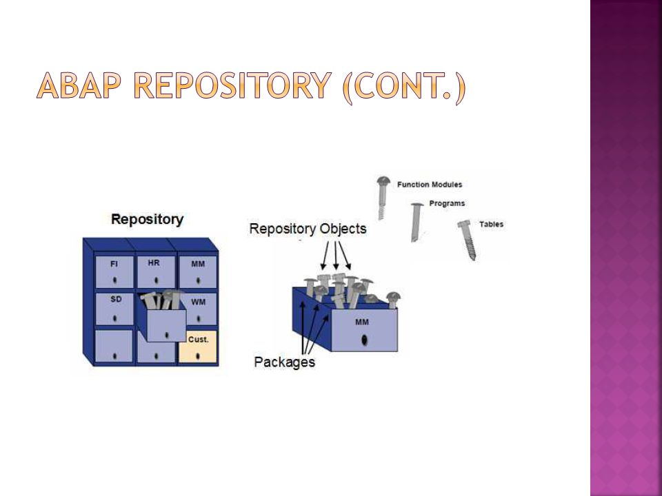 ABAP REPOSITORY (Cont.)