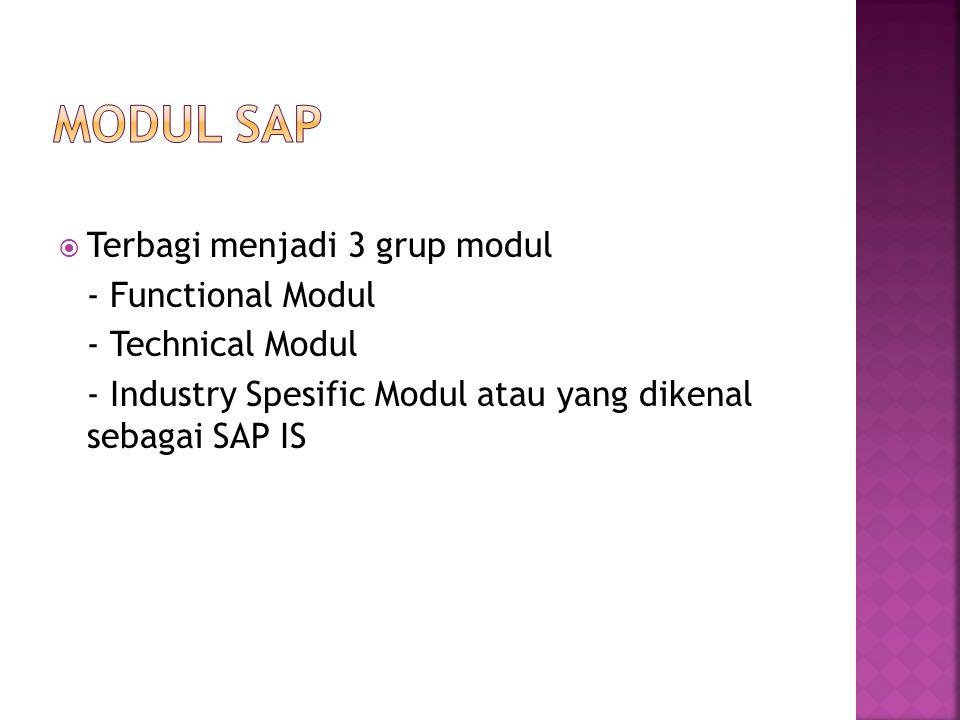 Modul SAP Terbagi menjadi 3 grup modul - Functional Modul