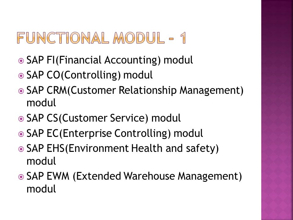 Functional modul - 1 SAP FI(Financial Accounting) modul