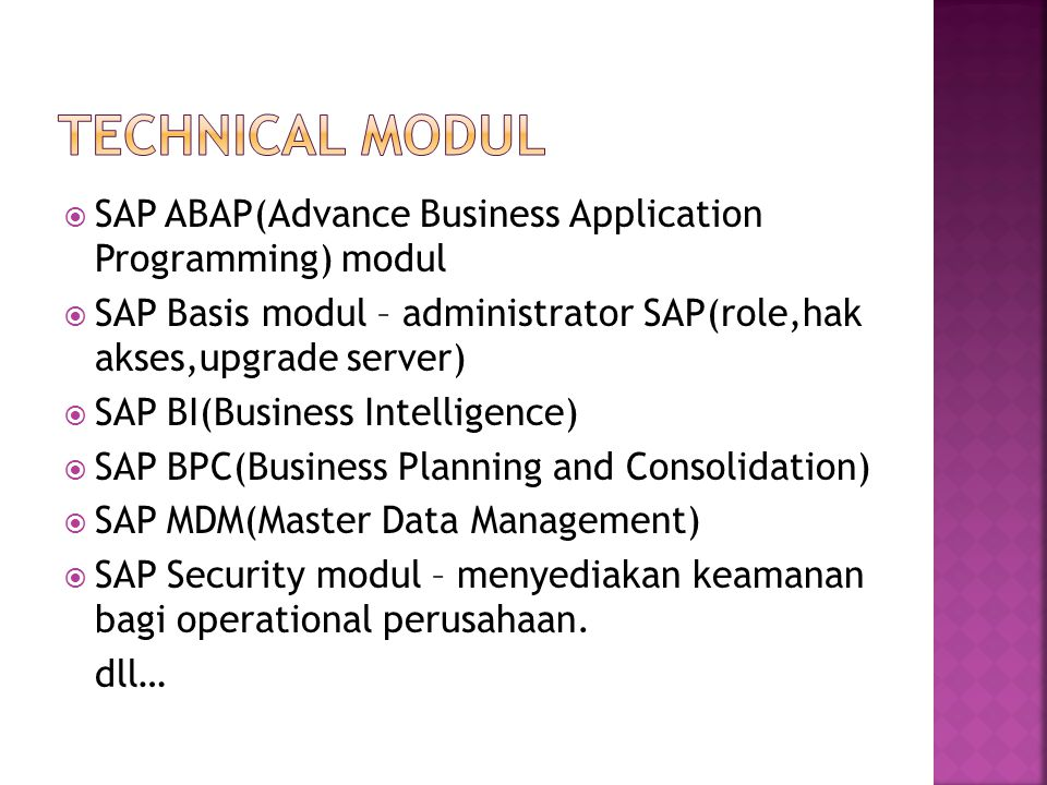 Technical MOdul SAP ABAP(Advance Business Application Programming) modul. SAP Basis modul – administrator SAP(role,hak akses,upgrade server)