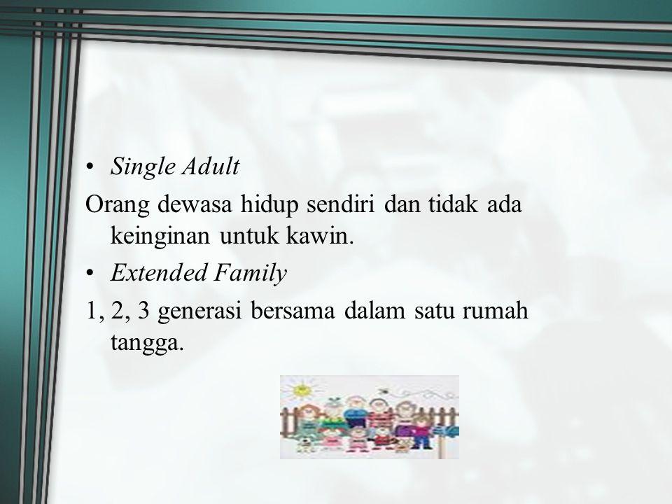 Single Adult Orang dewasa hidup sendiri dan tidak ada keinginan untuk kawin.