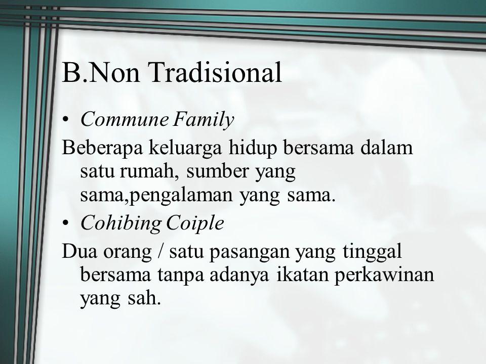B.Non Tradisional Commune Family