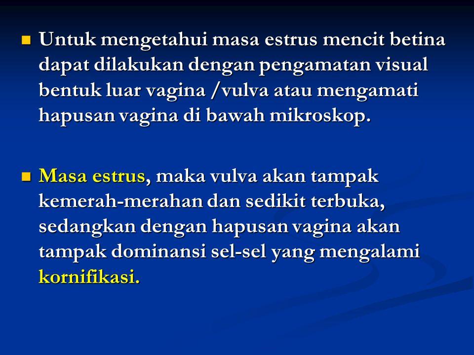Untuk mengetahui masa estrus mencit betina dapat dilakukan dengan pengamatan visual bentuk luar vagina /vulva atau mengamati hapusan vagina di bawah mikroskop.
