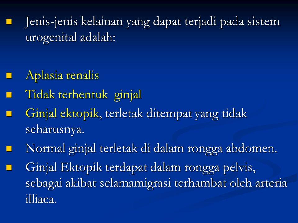 Jenis-jenis kelainan yang dapat terjadi pada sistem urogenital adalah: