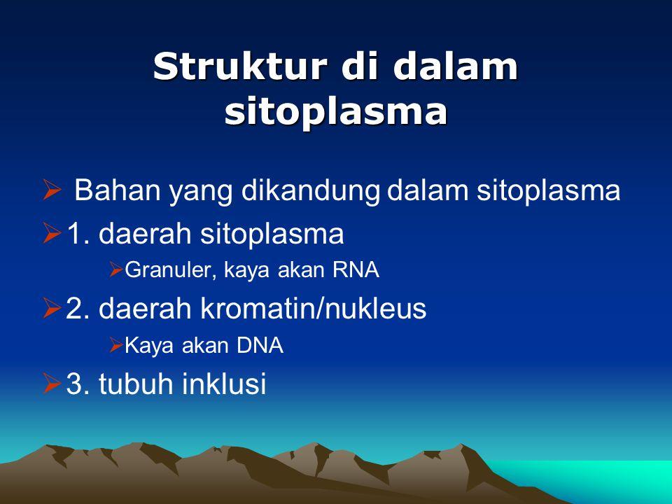 Struktur di dalam sitoplasma
