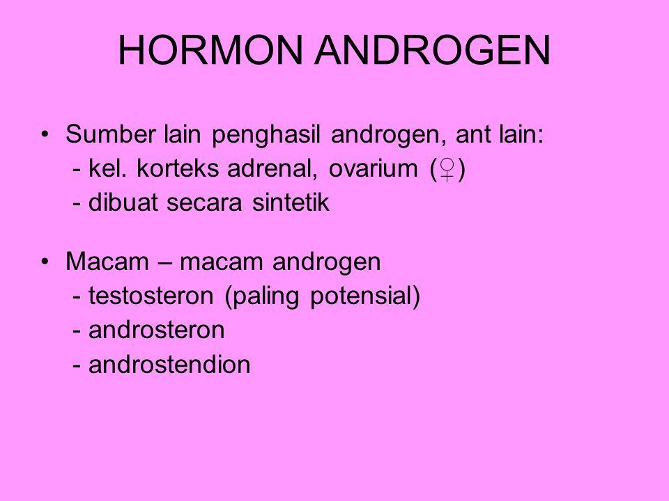 HORMON ANDROGEN Sumber lain penghasil androgen, ant lain: