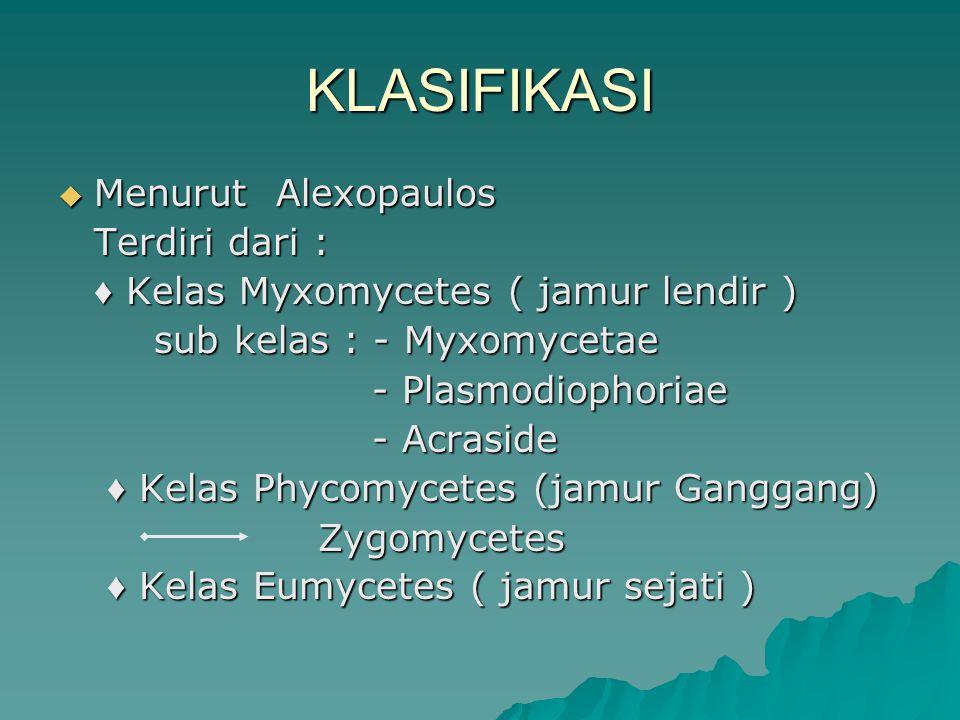 KLASIFIKASI Menurut Alexopaulos Terdiri dari :