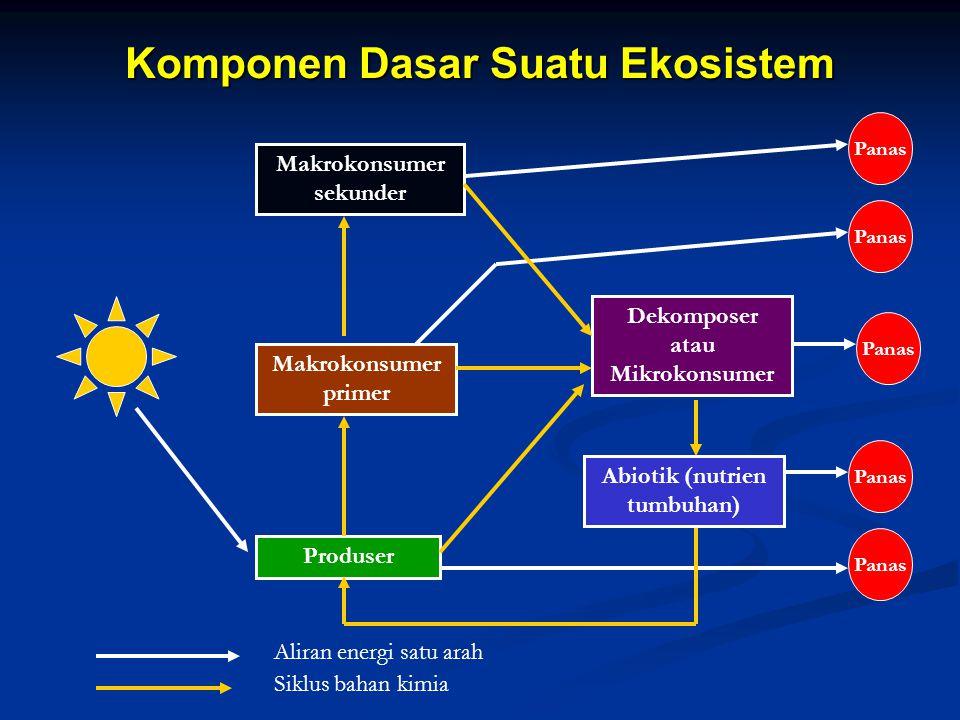 Komponen Dasar Suatu Ekosistem