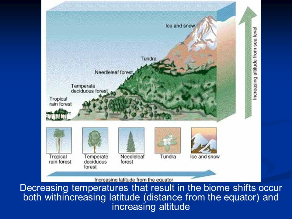 Decreasing temperatures that result in the biome shifts occur both withincreasing latitude (distance from the equator) and increasing altitude