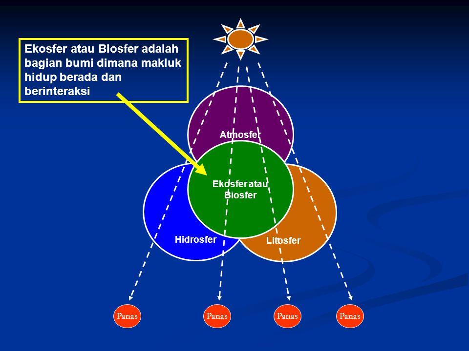 Ekosfer atau Biosfer adalah bagian bumi dimana makluk hidup berada dan berinteraksi