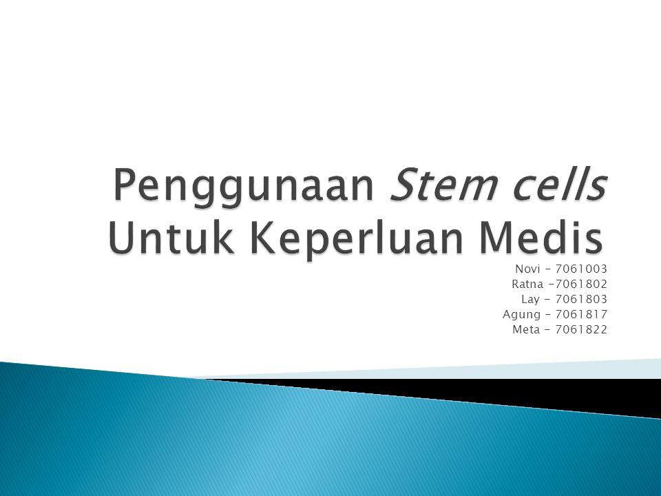 Penggunaan Stem cells Untuk Keperluan Medis