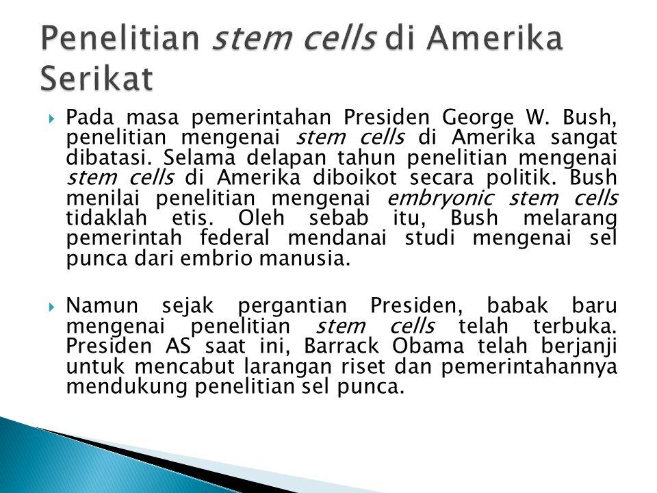 Penelitian stem cells di Amerika Serikat