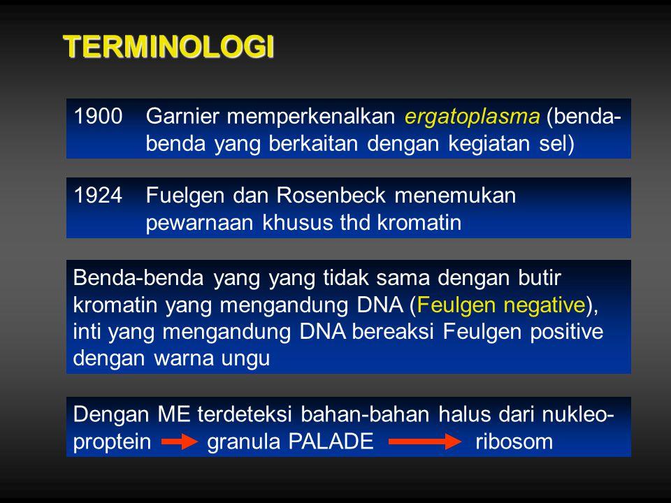 TERMINOLOGI 1900 Garnier memperkenalkan ergatoplasma (benda-benda yang berkaitan dengan kegiatan sel)