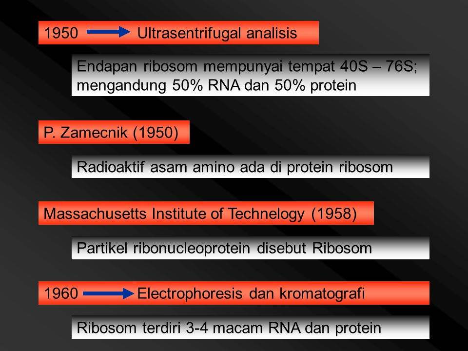 1950 Ultrasentrifugal analisis