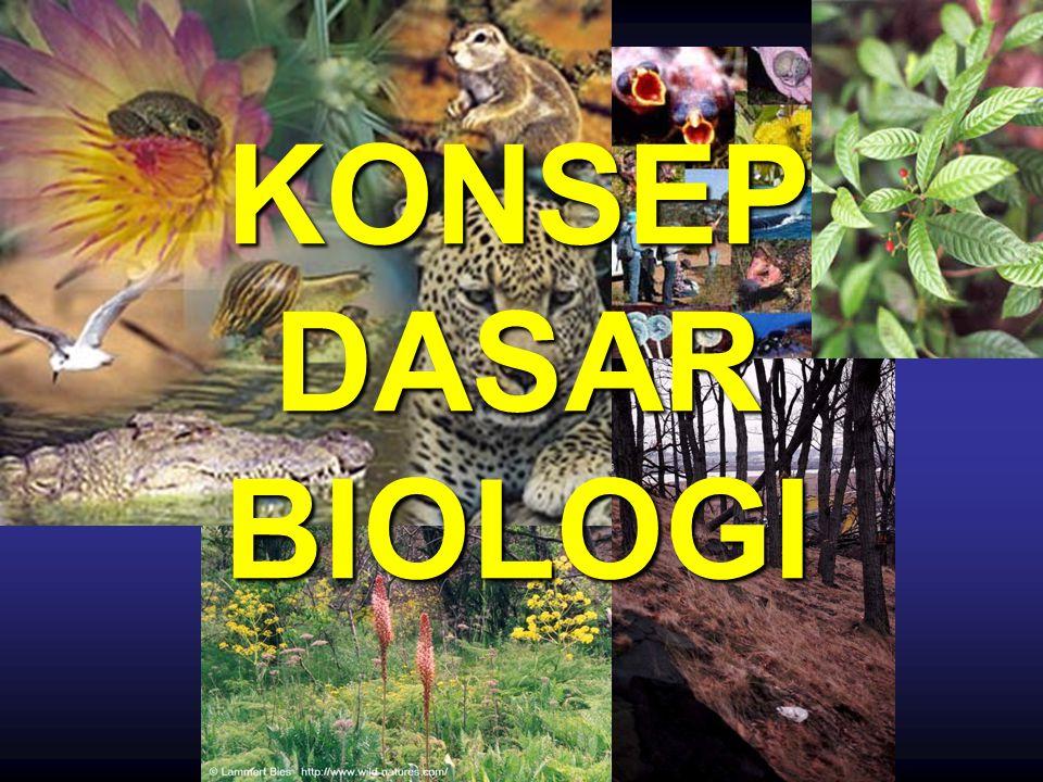 KONSEP DASAR BIOLOGI