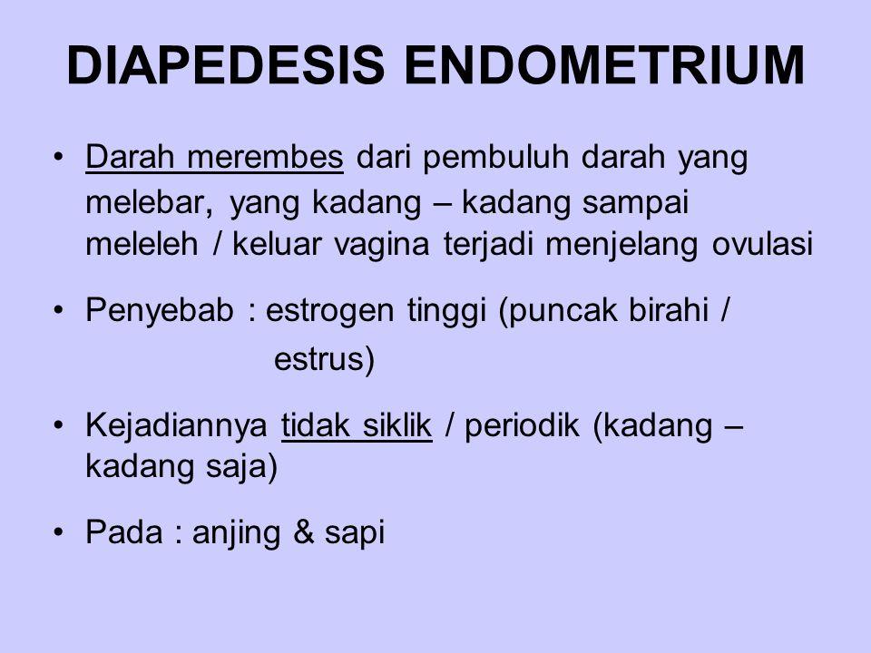 DIAPEDESIS ENDOMETRIUM