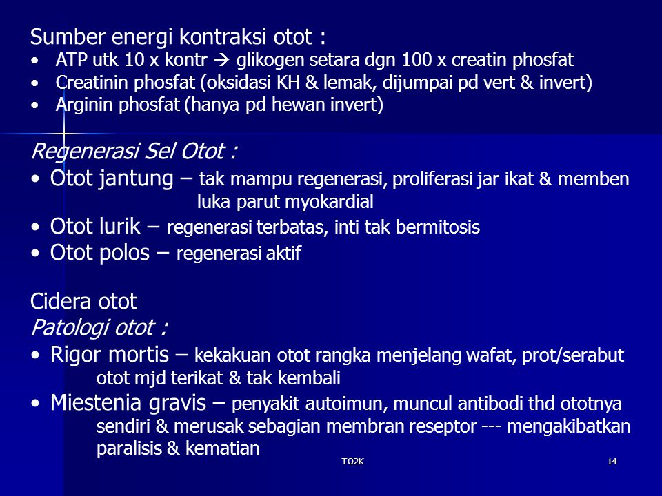 Sumber energi kontraksi otot :