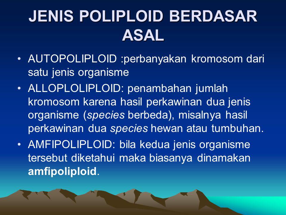 JENIS POLIPLOID BERDASAR ASAL