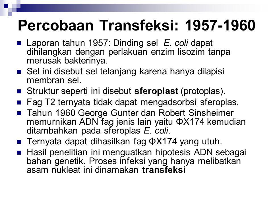 Percobaan Transfeksi: 1957-1960