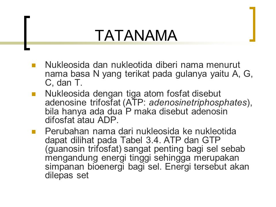 TATANAMA Nukleosida dan nukleotida diberi nama menurut nama basa N yang terikat pada gulanya yaitu A, G, C, dan T.