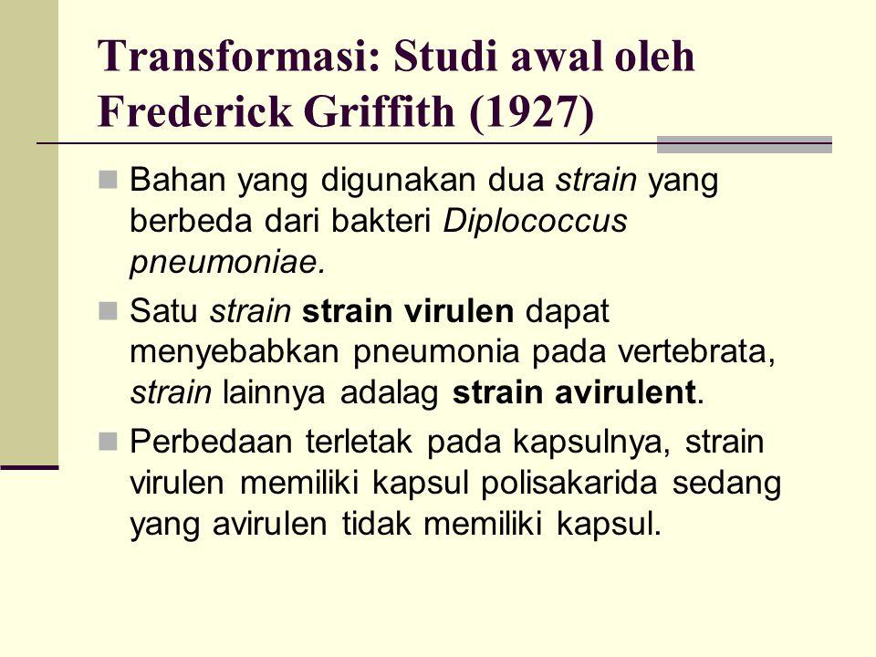 Transformasi: Studi awal oleh Frederick Griffith (1927)