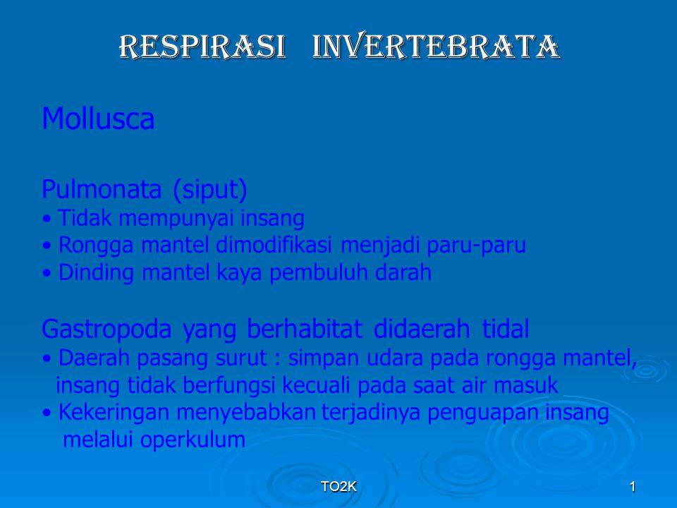 RESPIRASI INVERTEBRATA