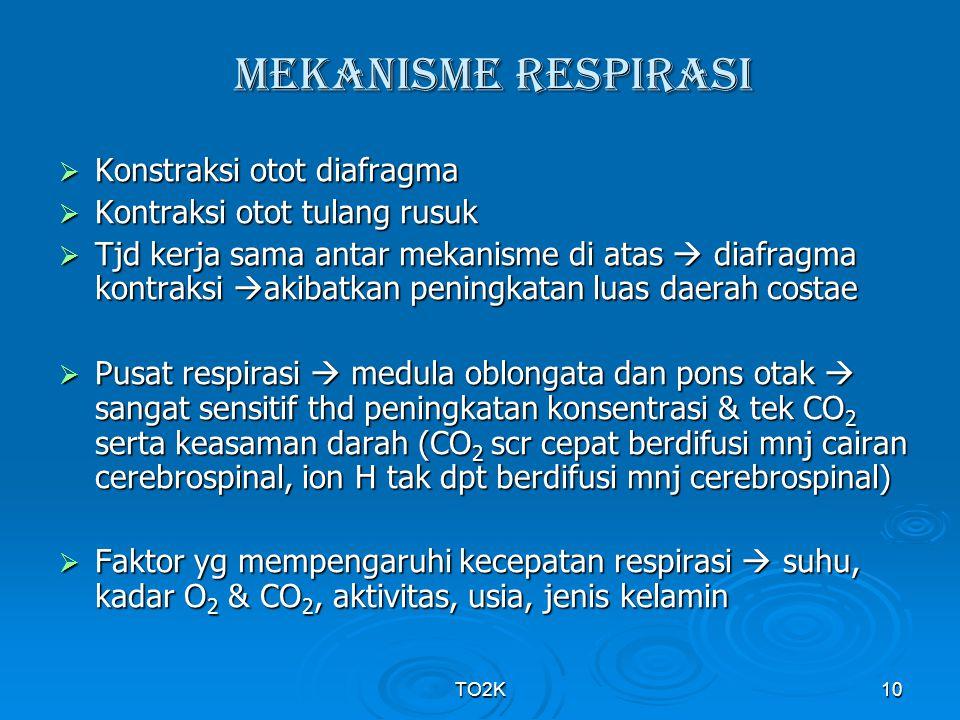 MEKANISME RESPIRASI Konstraksi otot diafragma
