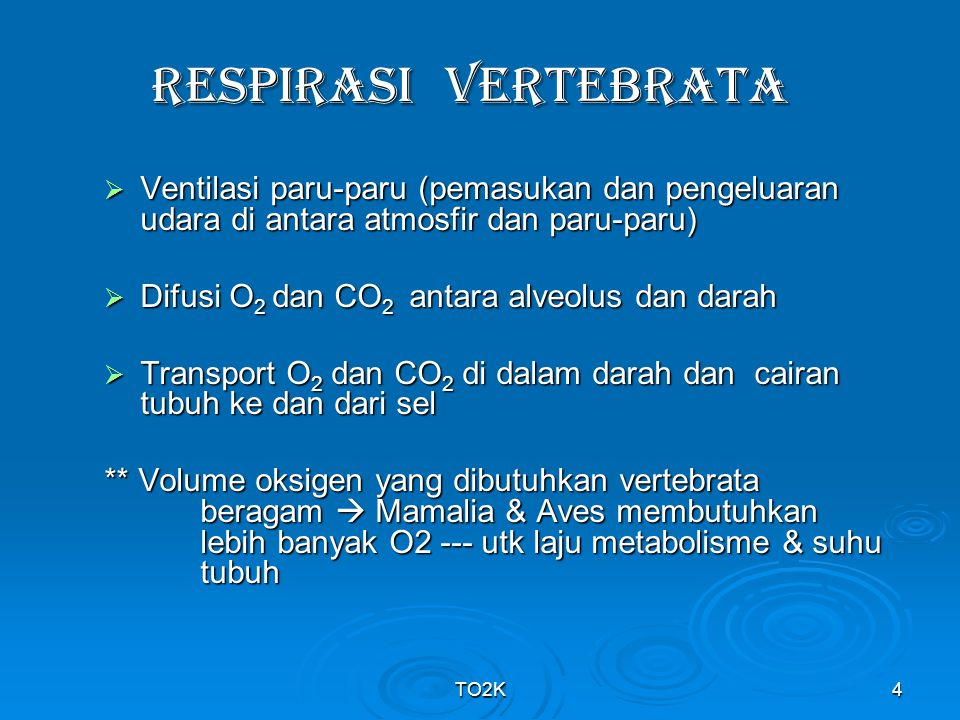 RESPIRASI VERTEBRATA Ventilasi paru-paru (pemasukan dan pengeluaran udara di antara atmosfir dan paru-paru)
