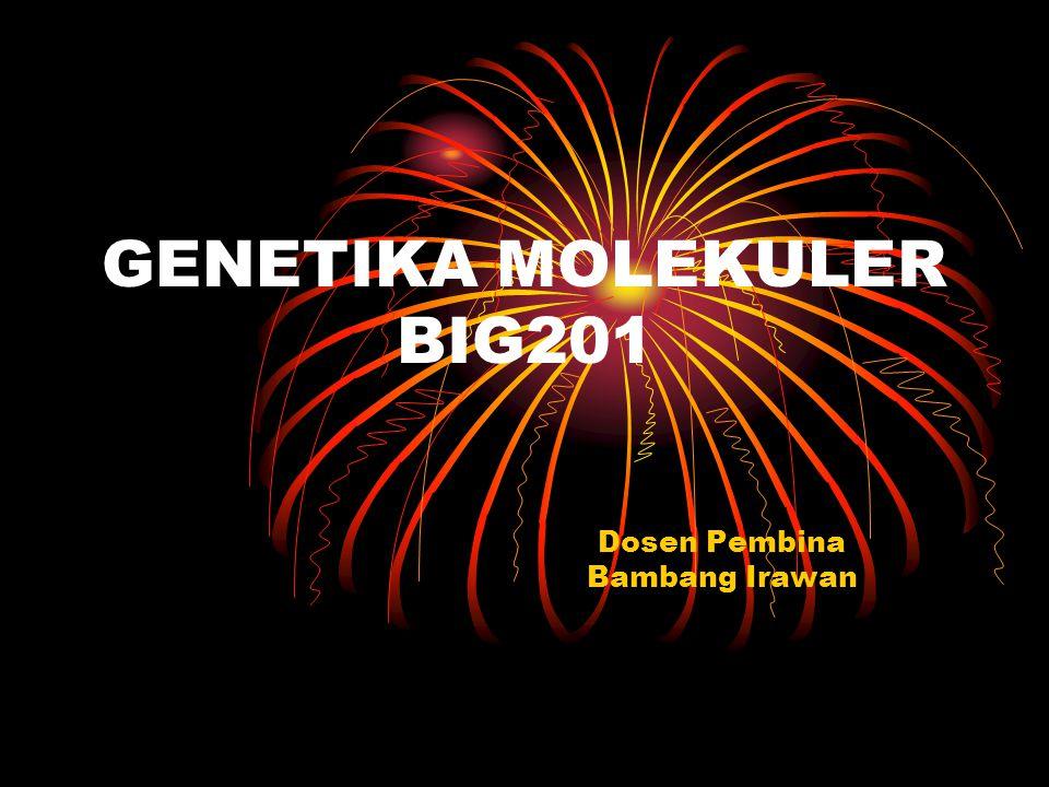 GENETIKA MOLEKULER BIG201