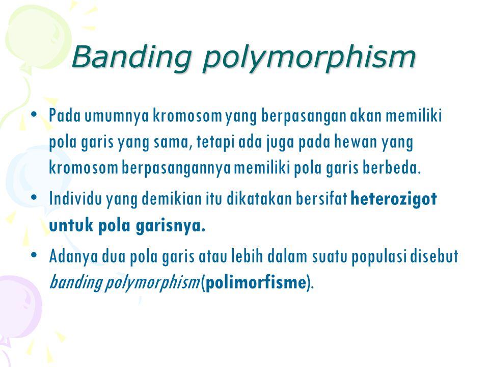 Banding polymorphism