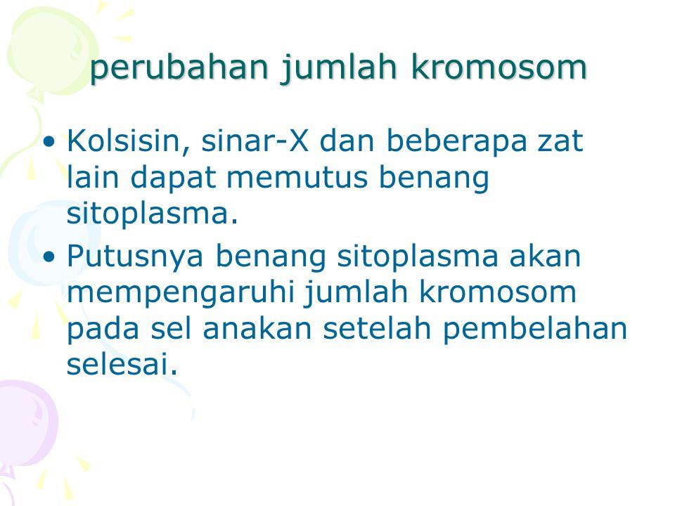 perubahan jumlah kromosom