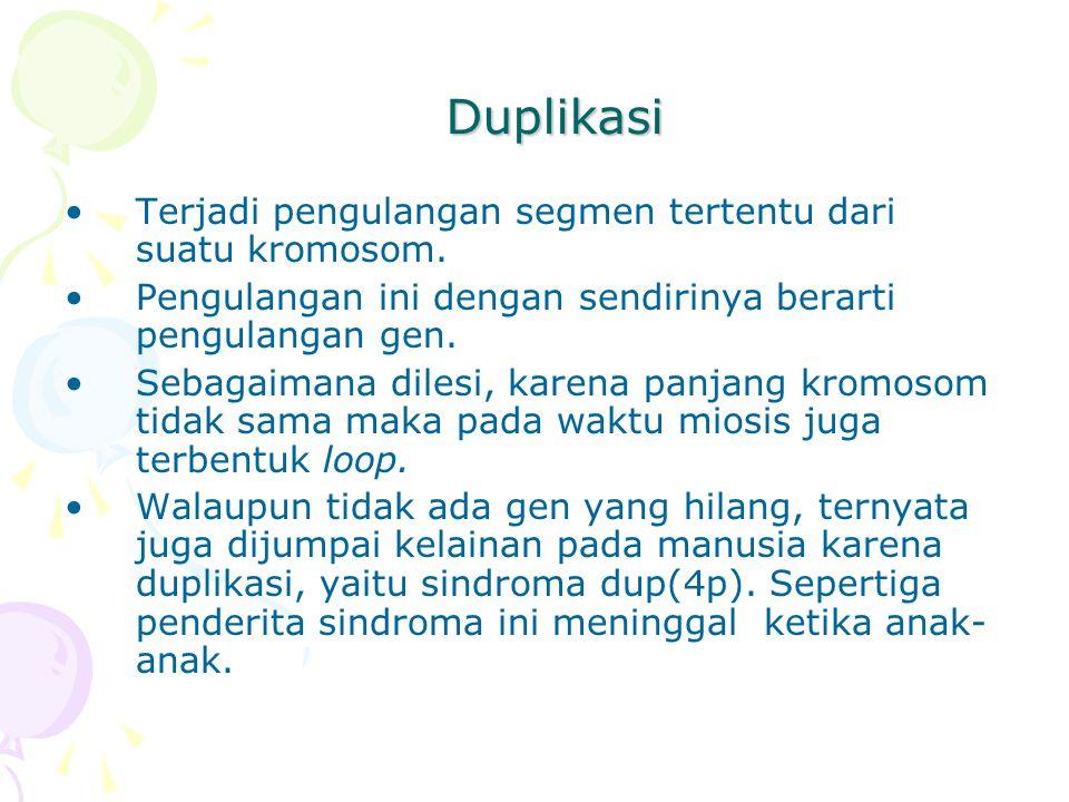 Duplikasi Terjadi pengulangan segmen tertentu dari suatu kromosom.