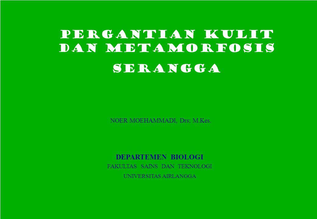 PERGANTIAN KULIT dan METAMORFOSIS SERANGGA