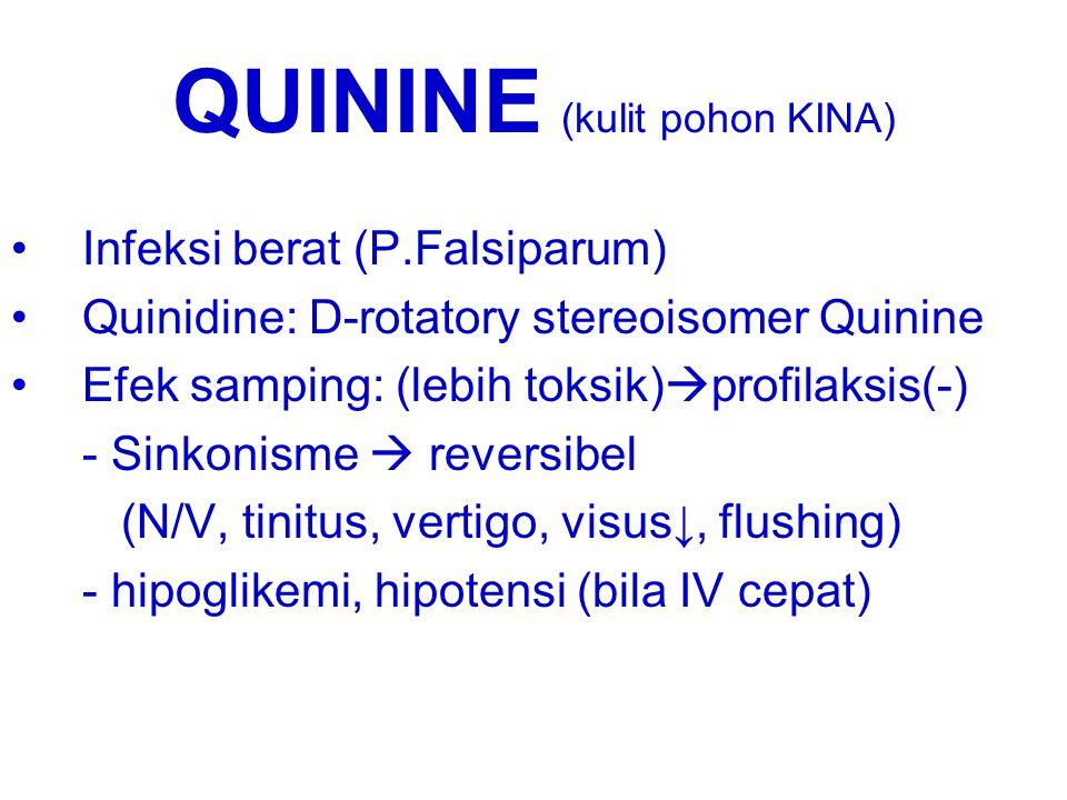 QUININE (kulit pohon KINA)