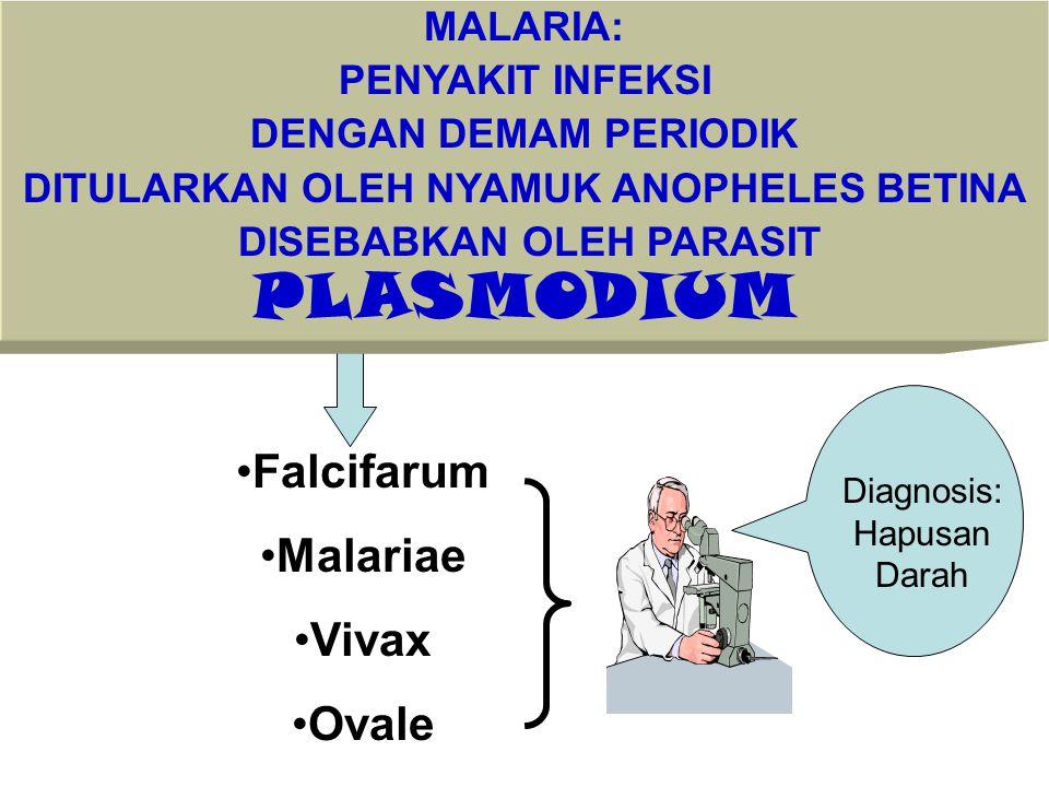 Falcifarum Malariae Vivax Ovale