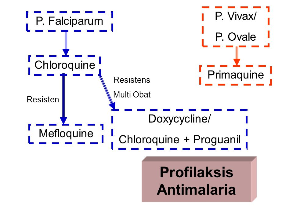 Profilaksis Antimalaria